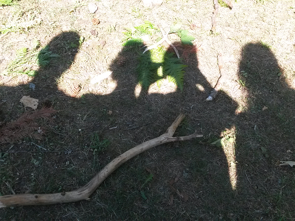 Teilnehmer Kraftort Wald