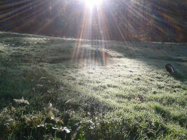 Joie de vivre - Sonneninsel